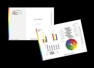 exemple profil AEC DISC